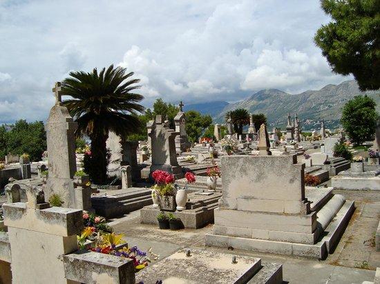 Cavtat cemetery