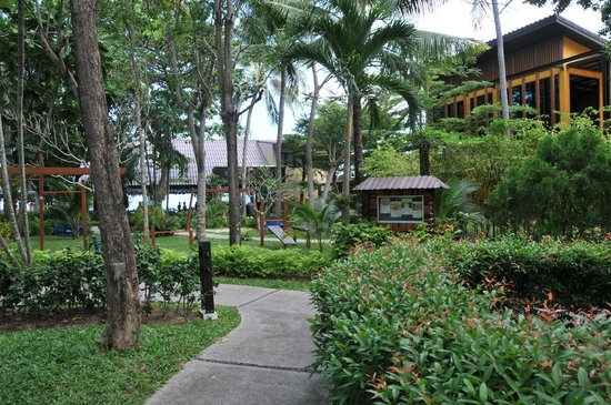 Peace Resort: Family Area