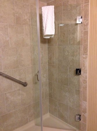 DoubleTree by Hilton Hotel Philadelphia - Valley Forge: Our room had a walk-in shower which we preferred