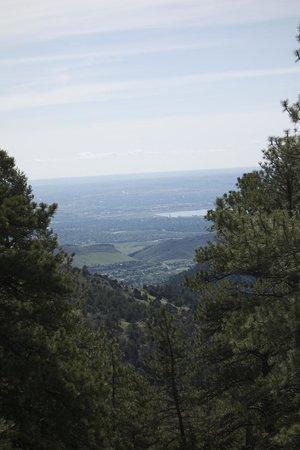 Mount Falcon Park: A view of the plains