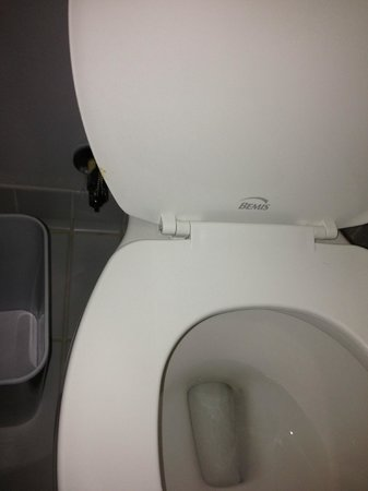 Four Points by Sheraton Niagara Falls Fallsview: Feces on the toilet seat