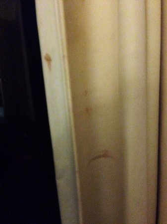 Skipjack Resort & Marina : Stains  on curtains? No idea what? Blood? Fish guys?