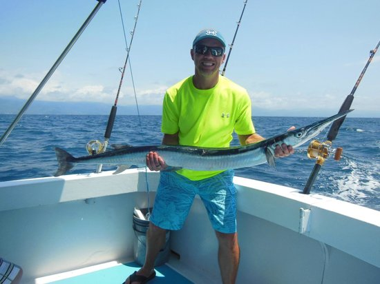 My 50 inch barracuda picture of puerto vallarta fishing for Fishing puerto vallarta