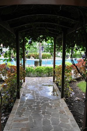 Pueblo Real : Canopy to the pool and gardens