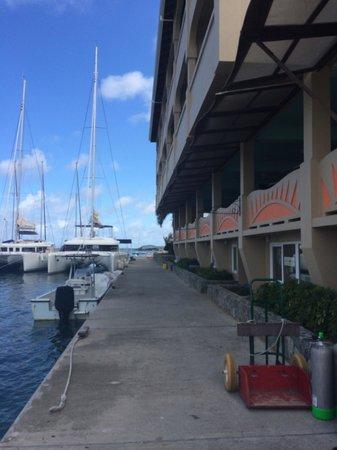 Hodge's Creek Marina Hotel : Marina