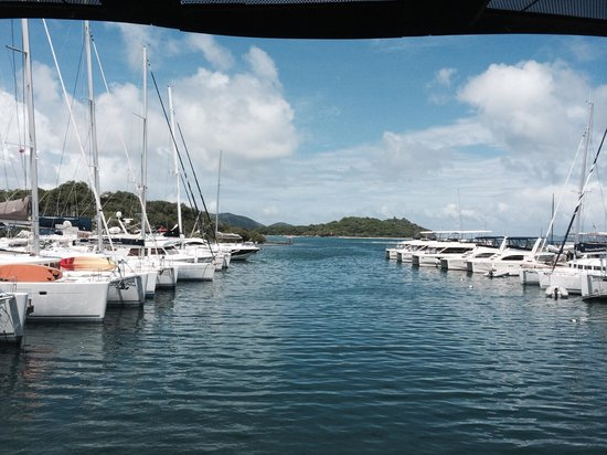Hodge's Creek Marina Hotel : Catamarans!
