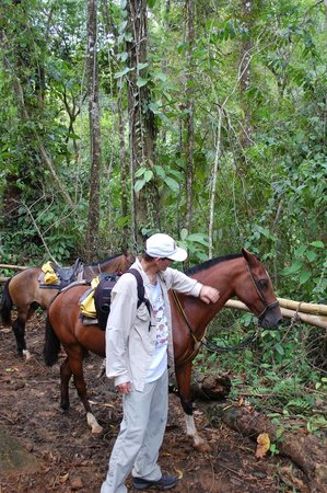Brisas del Nara: Giving the horses a break in the jungle while we visit the waterfall