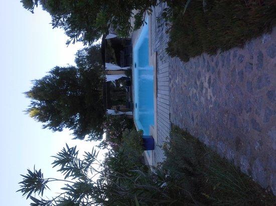 Son Bleda: Pool