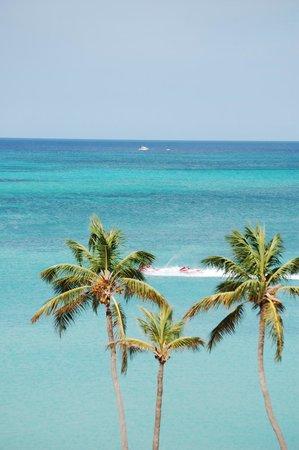 Holiday Inn Resort Aruba - Beach Resort & Casino: Gorgeous views