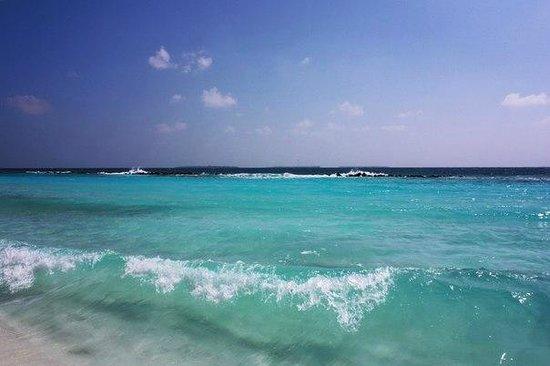 Royal Island Resort & Spa: на острове / island