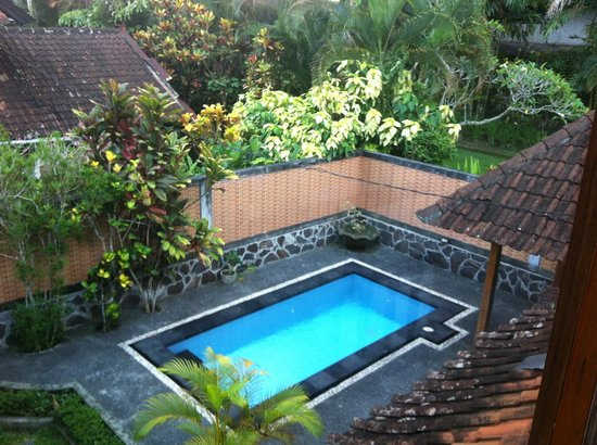 Bali Breeze Bungalows: Piscine