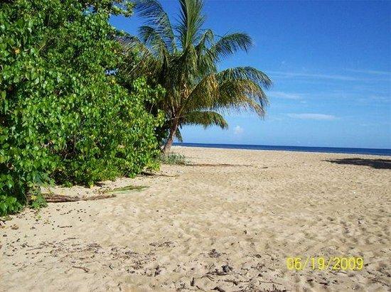 Villa Montana Beach Resort: the beach