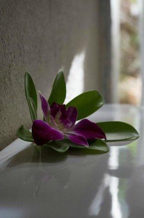 Moracea by Khao Lak Resort: :)