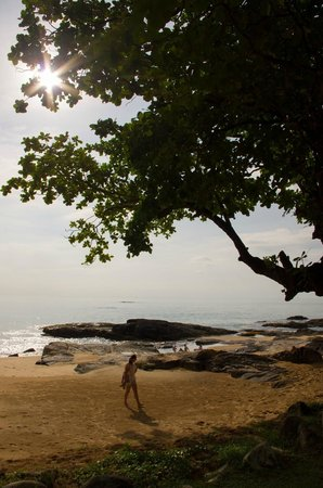Moracea by Khao Lak Resort: Пляж