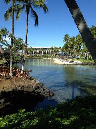 Waikoloa Beach Resort: Lagoon