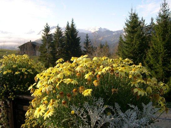 ERMITAGE Wellness- & Spa-Hotel : la très belle vue