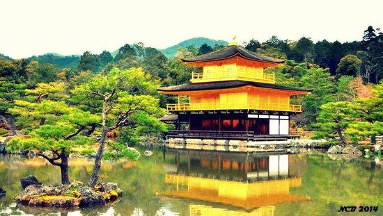 Kinkakuji Temple: Stunning beauty that is Kinkakuji!