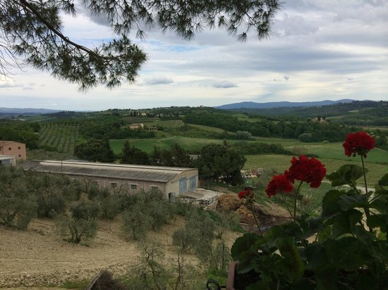 Fattoria Poggio Alloro: The fields and the farm buildings - they flowed out in all directions, as far as  you could see