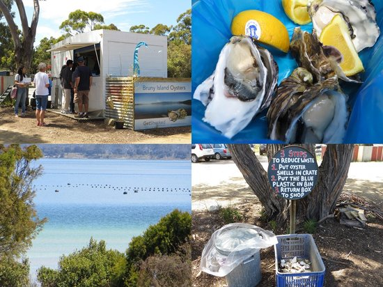 Get Shucked Oyster Bar : Bruny Island Oysters