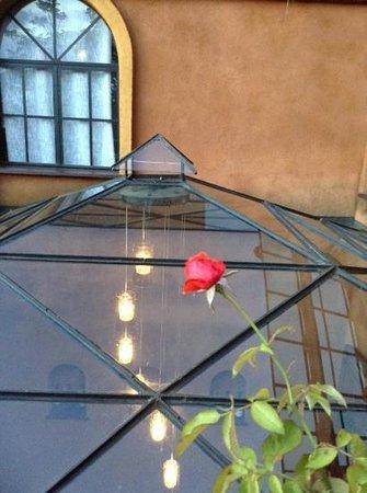 hotel Belvedere : Belvedere: restaurant terasse