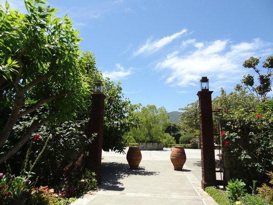 Peju Province Winery: outdoors