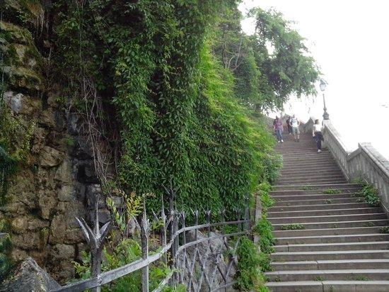 Citadel: Лестница от водопада