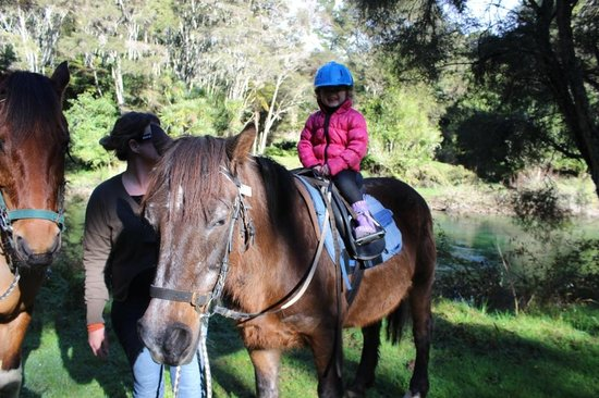 Briars Horse Trek : Pony rides are awesome