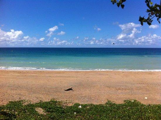 Chateau Beach Resort : 在私人沙灘
