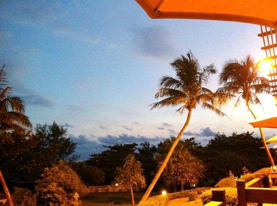 Chateau Beach Resort : 入住一樓,在陽台拍的
