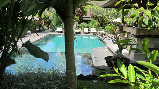 Sri Ratih Cottages : Sri Ratih pool