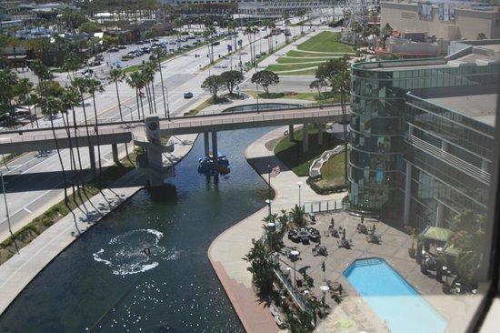 Hyatt Regency Long Beach: Pool View