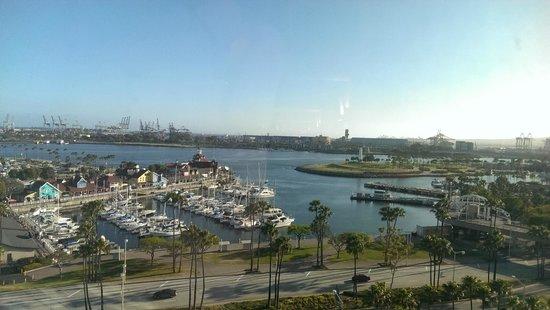 Hyatt Regency Long Beach: From our room