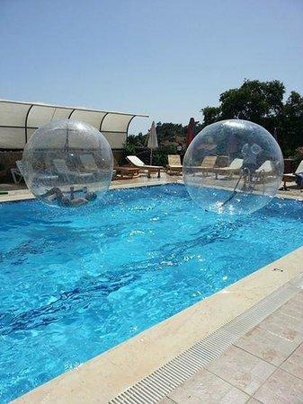 California Apart Hotel : havuz başı