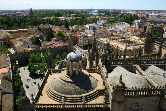 Giralda: Panorama su Alcazar e Cattedrale