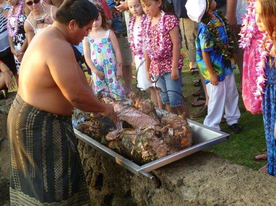 Marriott Luau Big Island Reviews