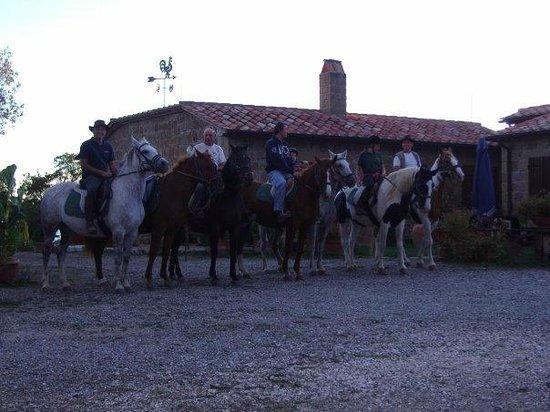 Agriturismo Il Cavone : I cavalli