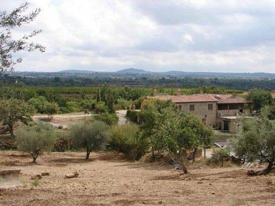 Agriturismo Il Cavone : Il panorama