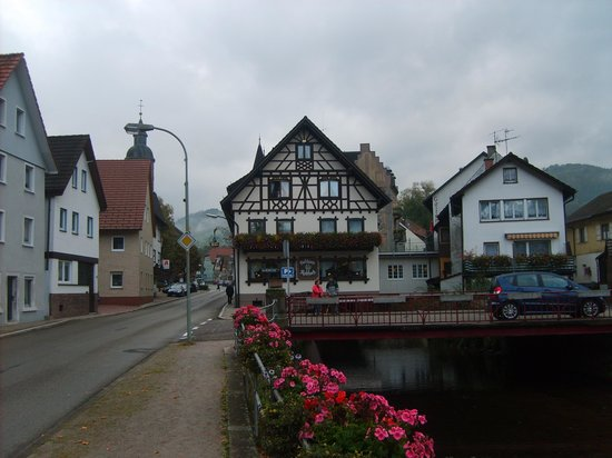 Hotel-Restaurant Rebstock: Vue de la route