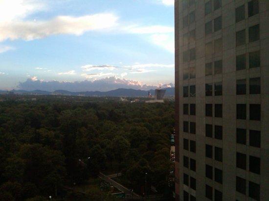 Wyndham Garden Mexico City Polanco : Room