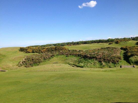 Kingsbarns Golf Links: 9th Green