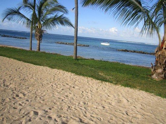 Tamassa: hotel beach