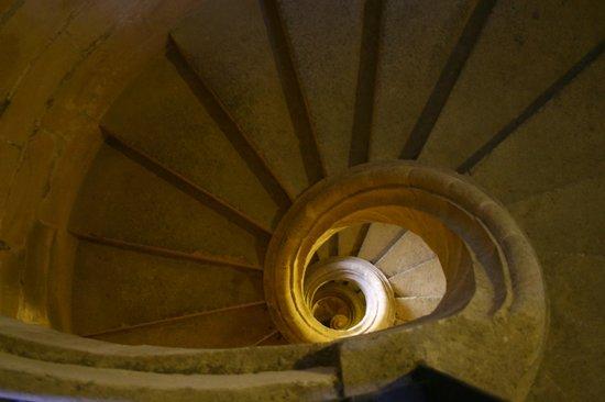 Catedral de Jerez de la Frontera : Campanile della Cattedrale, Jerez