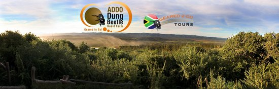Addo Dung Beetle Guest Farm : View