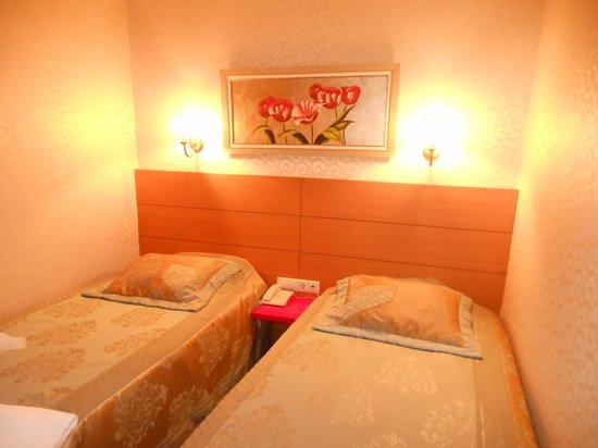 Almina Hotel : la camera