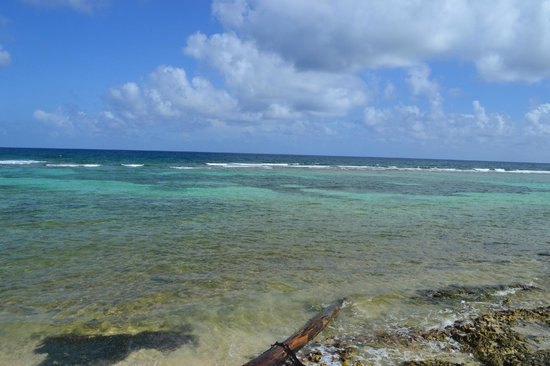 Koox Quinto Sole Boutique Hotel: La espectacular y tranquila playa...