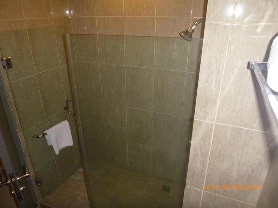 Hotel Dafam Semarang: Hot and strong shower