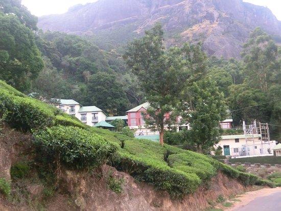 Club Mahindra Munnar : view