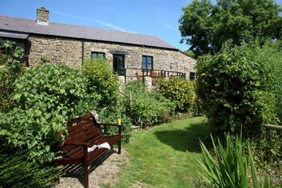 Cwm Connell Coastal Cottages: Cottage Gardens