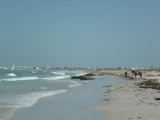 Djerba Plaza Hotel & Spa: plage
