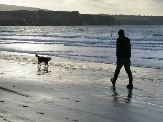 Cwm Connell Coastal Cottages: Walking the dog on Newport Beach